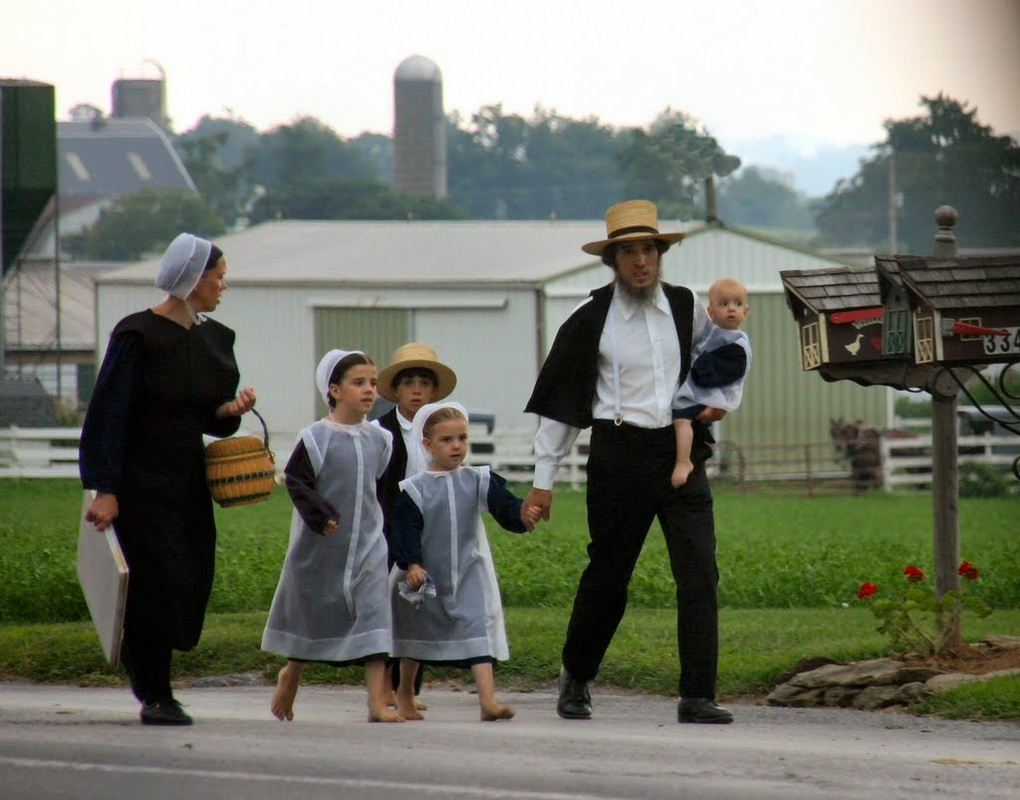 a brief history of the amish culture Amish beliefs are similar to other protestants it is their way of life that primarily differentiates them from other christian denominations there are about 200,000 old order amish living in more than 200 settlements in the united states and canada the largest communities are in pennsylvania, ohio, indiana, iowa, illinois, and kansas.